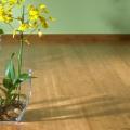 pavimenti di bambù